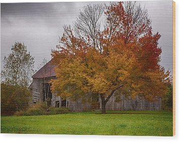 Wood Print featuring the photograph Rainbow Of Color In Front Of Nh Barn by Jeff Folger