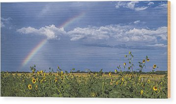 Wood Print featuring the photograph Rainbow Over Sunflowers by Rob Graham