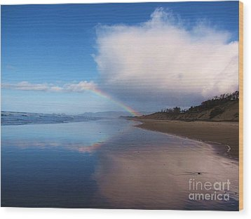 Rainbow Reflection Wood Print by Michele Penner