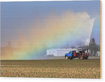 Rainbow Wood Print by Rudy Umans