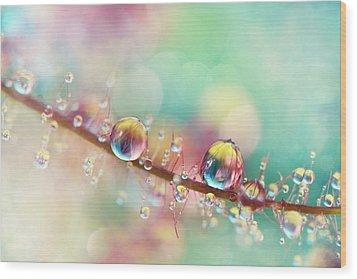Rainbow Smoke Drops Wood Print by Sharon Johnstone