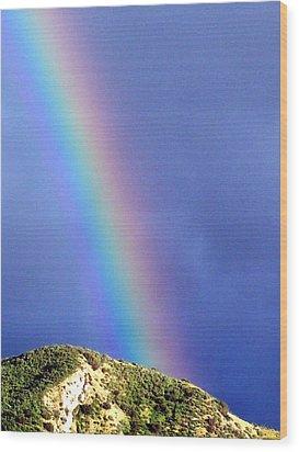 Rainbow Vi Wood Print