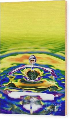 Rainbow Water Drop Wood Print by Tim Gainey