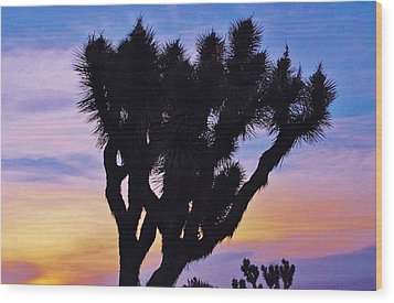 Wood Print featuring the photograph Rainbow Yucca by Angela J Wright