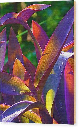 Raindrops On Colored Leaves Wood Print by Margaret Saheed