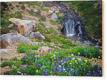 Rainer Glacial Meadow Wood Print