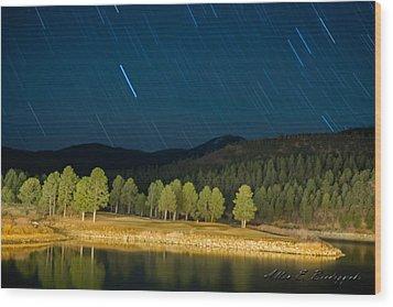 Wood Print featuring the photograph Raining Stars by Allen Biedrzycki