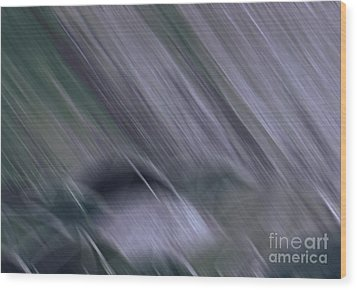 Rainy By Jrr Wood Print by First Star Art