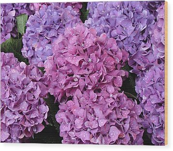 Wood Print featuring the photograph Rainy Day Flowers by Ira Shander