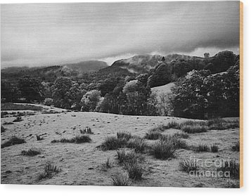Rainy Day In The Lake District Near Loughrigg Cumbria England Uk Wood Print by Joe Fox