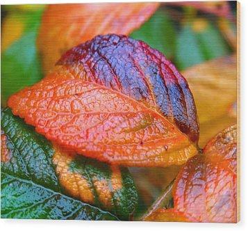 Rainy Day Leaves Wood Print by Rona Black