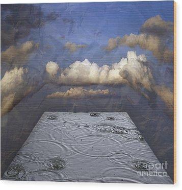 Rainy Day Wood Print by Michal Boubin