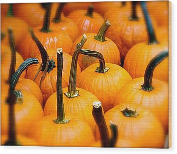 Wood Print featuring the photograph Rainy Day Pumpkins by Ira Shander
