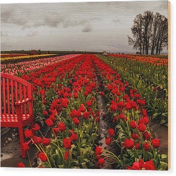 Wood Print featuring the photograph Rainy Day Tulips by Nancy Marie Ricketts