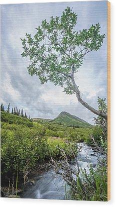 Rainy Evening On A Mountain Stream Wood Print