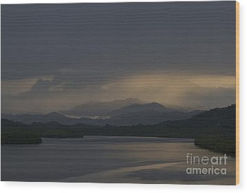 Wood Print featuring the photograph Rainy Morning by Gary Bridger