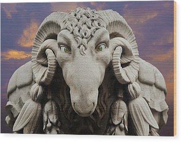 Ram-a-sees Wood Print by David Davies