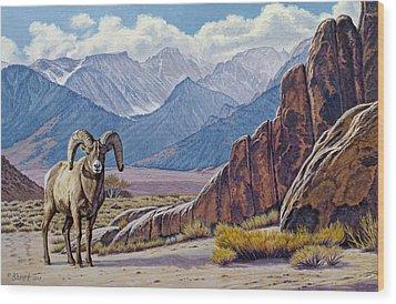 Ram-eastern Sierra Wood Print by Paul Krapf
