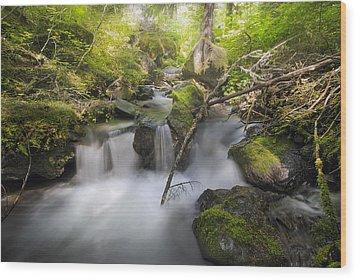 Ramona Creek Wood Print by David Gn