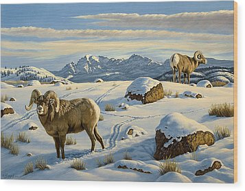 Rams Down From Junction Butte Wood Print by Paul Krapf