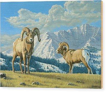 Rams On The Ridge  Wood Print by Paul Krapf