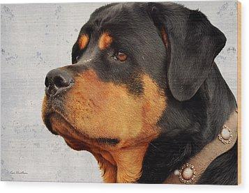 Ranch Dog On Watch Wood Print by Kae Cheatham