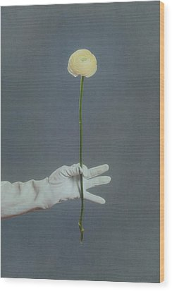 Ranunculus Wood Print by Joana Kruse