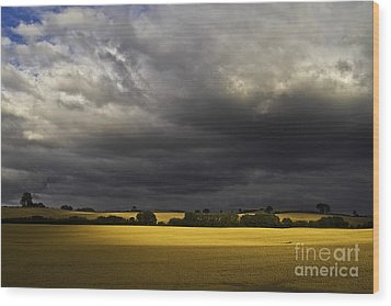 Rapefield Under Dark Sky Wood Print by Heiko Koehrer-Wagner