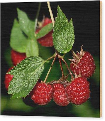 Raspberries Wood Print by Nikolyn McDonald