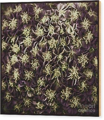Wood Print featuring the photograph Raspberry Circles by Jean OKeeffe Macro Abundance Art