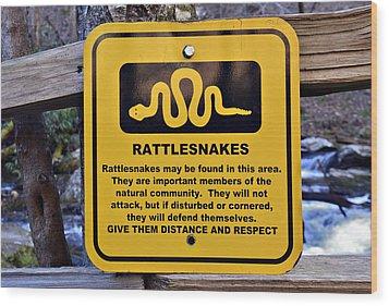 Rattlesnakes Wood Print by Susan Leggett