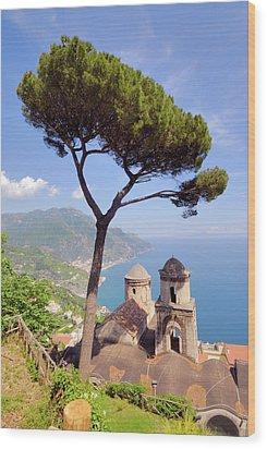 Ravello Pine Wood Print by Alan Toepfer