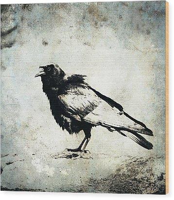 Raven On Blue Wood Print by Carol Leigh