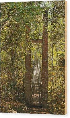 Ravine Gardens State Park In Palatka Fl Wood Print by Christine Till