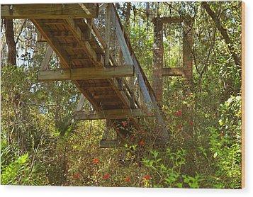 Ravine State Gardens Palatka Florida Wood Print by Christine Till