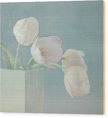 Ray Of Beauty Wood Print by Kim Hojnacki