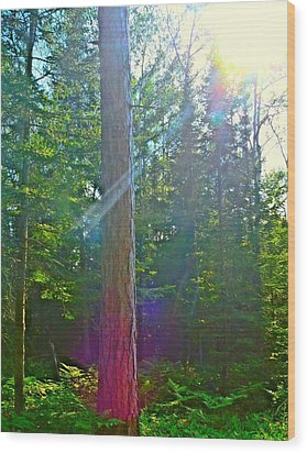 Ray Of Hope Wood Print