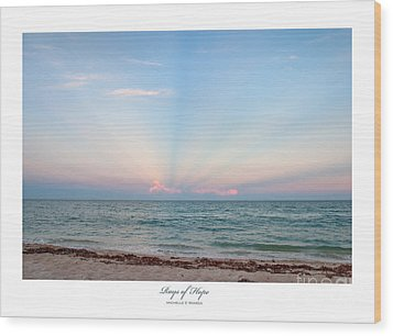 Rays Of Hope Wood Print by Michelle Wiarda