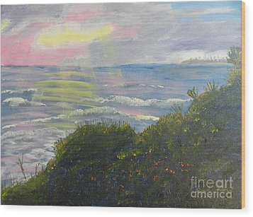 Rays Of Light At Burliegh Heads Wood Print by Pamela  Meredith