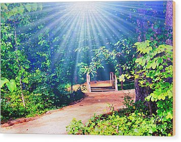 Rays Of Light To Guide The Path Wood Print by Judy Palkimas