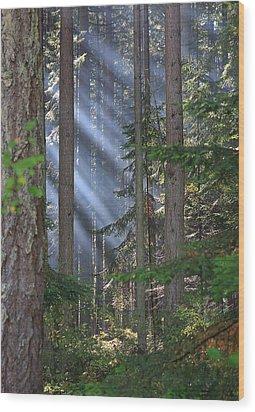Rays Wood Print