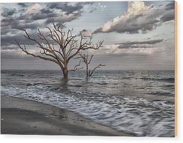 Reach For The Sky II Wood Print