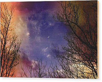 Reaching For The Moon 2 Wood Print by Susan Crossman Buscho