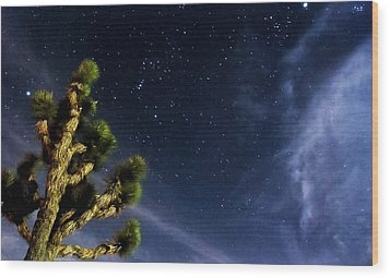Reaching For The Stars Wood Print by Angela J Wright