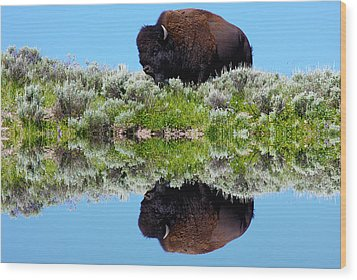 Ready For A Drink Wood Print by Shane Bechler