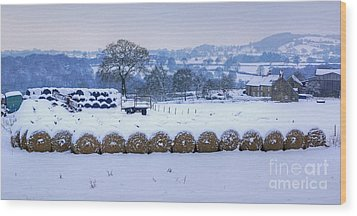 Ready For Winter Wood Print by David Birchall