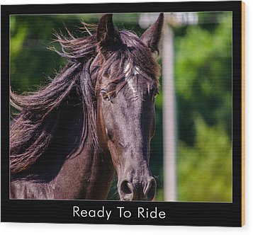 Ready To Ride Wood Print by Dan Holland