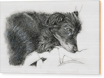 Wood Print featuring the drawing Ready To Sleep by Penny Collins
