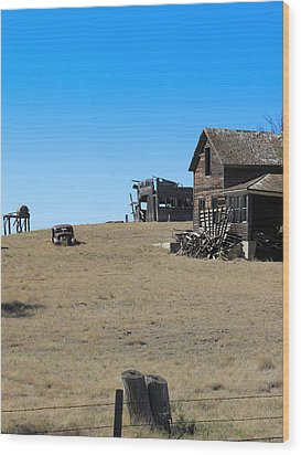 Wood Print featuring the photograph Real Estate On The Open Plain by Kathleen Scanlan