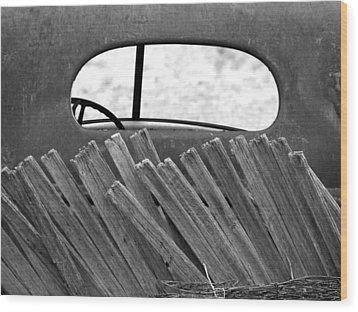 Rear View Wood Print by Tom DiFrancesca